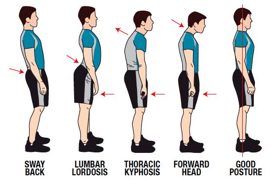Houding en bewegingspatroon voor een sterke rug.